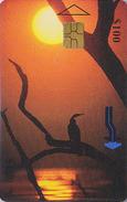Télécarte à Puce ZIMBABWE - ANIMAL - OISEAU - ANHINGA - BIRD & Sunset Africa Chip Phonecard - 4295 - Simbabwe