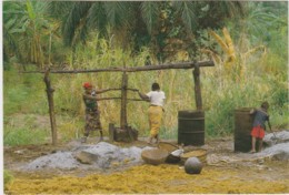 Bt - CPM BURUNDI - Extractionde L'huile De Palme - Burundi