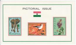1964 Ghana Flora Fauna Birds Elephants Hippos Parrots Set Of 2  Souvenir Sheets Complete  MNH - Ghana (1957-...)