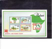 Malawi - Protection De L'environnement & Climat