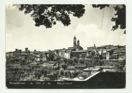 MONTALCINO - PANORAMA  - VIAGGIATA FG - Siena