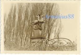Frühling 1940, In Mayen (Eifel) - Kriegerdenkmal - 12. Armee/Armeeoberkommando 12 (AOK 12) - Abteilung IV A - Krieg, Militär