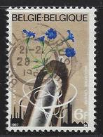 VLASNIJVERHEID-INDUSTRIE LINIERE - Belgique