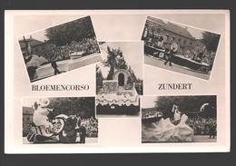 Zundert - Bloemencorso Zundert - Multiview - Pays-Bas