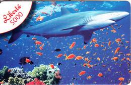 NEW CALEDONIA - Shark, OPT Prepaid Card 5000 CFP, Exp.date 31/12/09, Used - New Caledonia