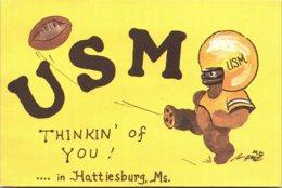 Mississippi Hattiesburg USM Football - Hattiesburg