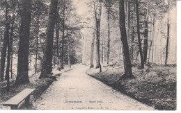 Groenendael - Sous Bois - Hoeilaart