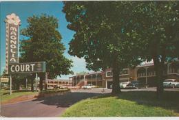 Little Rock AR Arkansas Magnolia Court Motel Postcard - Little Rock