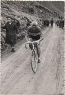 Fotografia Cm. 7,2 X 10,4 Con Ciclista In Azione Radfahren Cycling Cyclisme - Sport