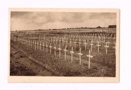 Cimetière National De Douaumont. - Cimetières Militaires