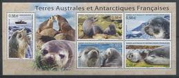 TAAF 2010 - N° F566 - Faune - Otarie D'Amsterdam - Neuf -** - Terres Australes Et Antarctiques Françaises (TAAF)