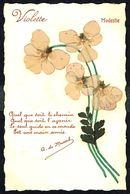 Fleurs - Violettes Véritables -  Circulé Sous Enveloppe - Circulated Under Cover - Gelaufen U. Umschlag. - Flowers, Plants & Trees