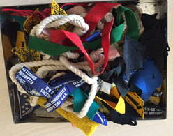 Scoutisme  Lot Insignes - Scouting