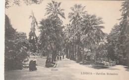 ***  LISBOA  *** Lisbonne Jardin Botanico - Unused TTB - Lisboa