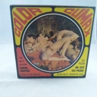 Vintage XXX Adult Super 8mm Movie -  Color Climax 1212 Sex PicNic - Scandinavian - Autres Collections