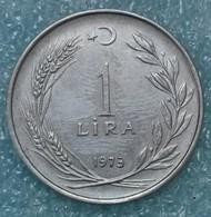 Turkey 1 Lira, 1973 -1024 - Turkey
