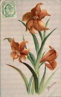 FLORE - Carte Postale  - Fleur D 'Afrique Du Sud - L 29690 - Flowers