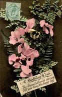 FLORE - Carte Postale  - Fleur D 'Afrique Du Sud - L 29692 - Flowers