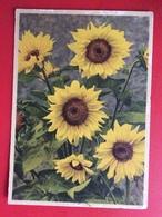 CPA Fleurs Tournesol - Héliotrope Ref 392 - Flowers