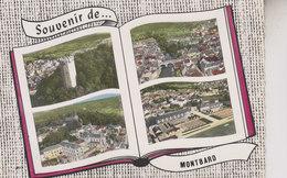 SOUVENIR DE MONTBARD - Montbard