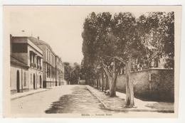 Blida -       Avenue Bizot - Blida