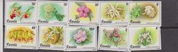 Rwanda 1981 Flowers Orchids Plants Nature Conservation 10v Set MNH - Orchidee