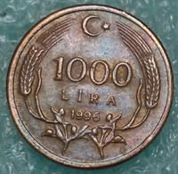 Turkey 1.000 Lira, 1996 -4446 - Türkei