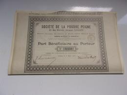 LA POUDRE PEIGNE (brevets LUCIANI) GENEVE , SUISSE (1903) - Actions & Titres