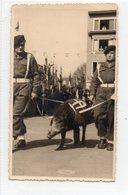 Bastogne  Plus 1€ Pour Envoye - Bastogne