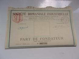 DOMANIALE INDUSTRIELLE (1919) LYON - Actions & Titres