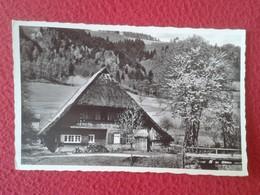 POSTAL POST CARD CARTE POSTALE SUIZA SUISSE ? SCHWEIZ Switzerland ? GERMANY Deutschland ? SCHWARZWALDHAUS FOREST HOUSE ? - Edificios & Arquitectura