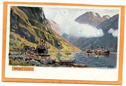 Naero Fjord Norway 1905 Postcard - Norway