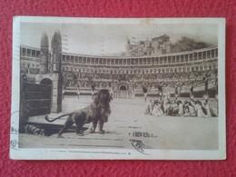 POSTAL POST CARD CARTE POSTALE ITALIA ITALY ROMA ROME COLOSSEO ? COLISEO ? FIERE FIERAS....LEÓN LION LÖWE CHRISTIANS ? - Roma (Rome)