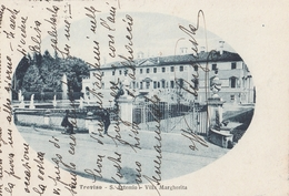 Cartolina - Postcard / Viaggiata - Sent /  Treviso, Villa Margherita. - Treviso