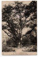 OISE * PIERREFONDS * LE GROS CHENE De SAINT JEAN AUX BOIS * Plaque Jougla * 54 - Trees