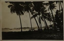 Ned. Indie - Indonesia / Fotokaart // Onbekend 1931 Met Paketvaart Stempel - Indonesië