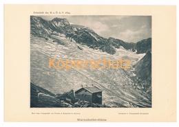 030-2 Warnsdorfer Hütte Gletscher Alpenverein Berghütte Kunstblatt Lichtdruck 1894!! - Unclassified