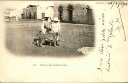 DJIBOUTI - Carte Postale - Guépard Apprivoisé - L 29805 - Djibouti