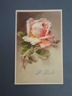 Cp Couleur  Sainte-Barbe. Belle Rose - Autres