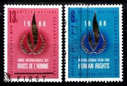 Nations Unies New-York 1968 Mi.Nr: 206-207 Tag Der....  Oblitèré / Used / Gebruikt - New-York - Siège De L'ONU