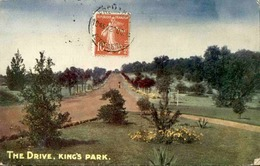 AUSTRALIE - Carte Postale - The Drive , King's Park - L 29857 - Other