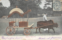 Zébu Ceylan SRI-LANKA - Sri Lanka (Ceylon)