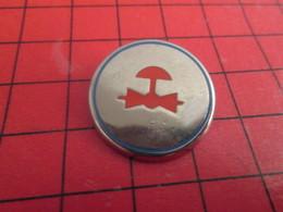 412f Pin's Pins / Beau Et Rare / THEME : CARBURANTS / SYMBOLES DE PIPE-LINE OU DE FORAGE PETROLIER - Carburants