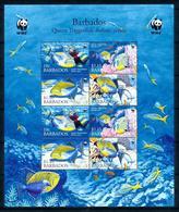 Barbados 2006, Marine Life, Diving, Sheetlet - Barbados (1966-...)