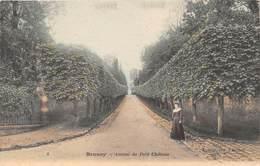 BRUNOY - Avenue Du Petit Château - Brunoy