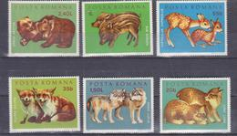 Animals Romania 1972 Set 6v   , Mnh , The Bears, Foxes, Deer, Wolves, Panther, Pigs - Sellos