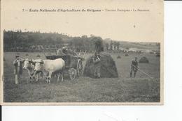GRIGNON   Travaux Pratiques  La Fenaison Ecole D'agriculture - Grignon