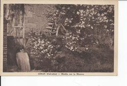 AIRAN   Moulin Sur La Muance - France