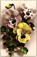 CPA FANTAISIE FLEURS -  CARTE BORDS DORES - PENSEES OUVERTES JAUNE ET BLANCHES ET UNE PENSEE EN BOUTON - Flowers