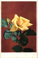 CPA FANTAISIE FLEURS -  UNE ROSE JAUNE ECLOSE ET UN JOLI PETIT BOUTON - Flowers